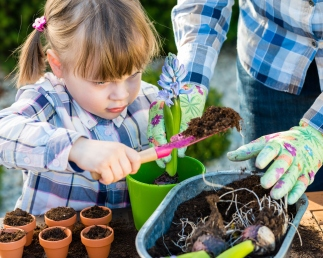 Girl planting flower bulbs with her mother